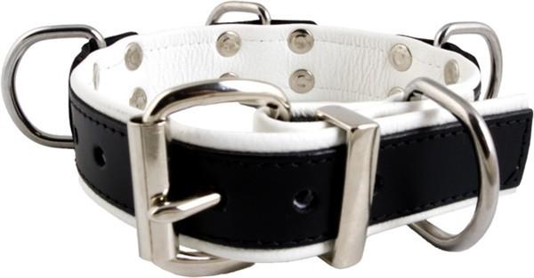 Mister B Slave Collar 4 D-Rings White